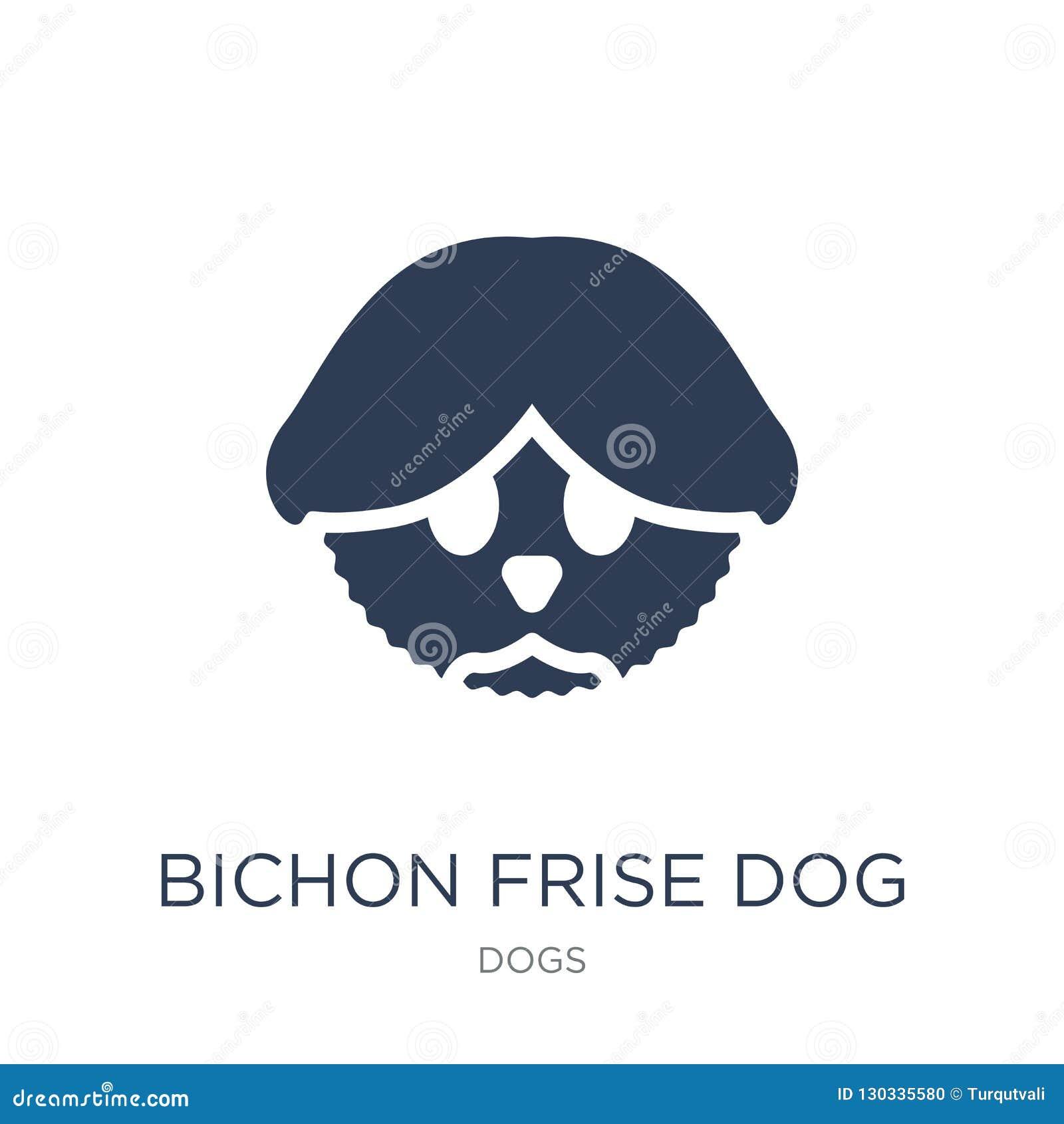 Icona del cane di Bichon Frise Icona piana d avanguardia del cane di Bichon Frise di vettore