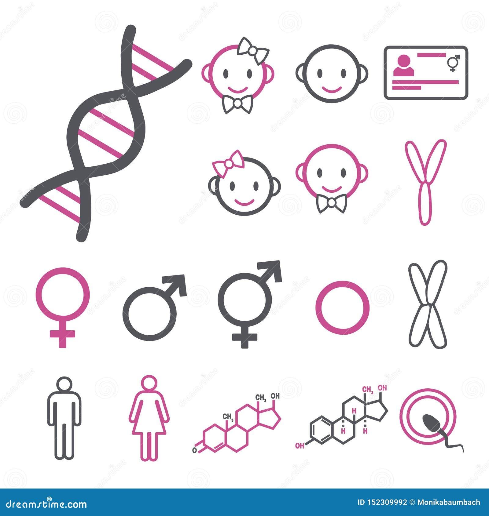 Icona di vettore messa per creare infographics relativo al genere, al transessuale e a Intersex come DNA, i cromosomi, il maschio