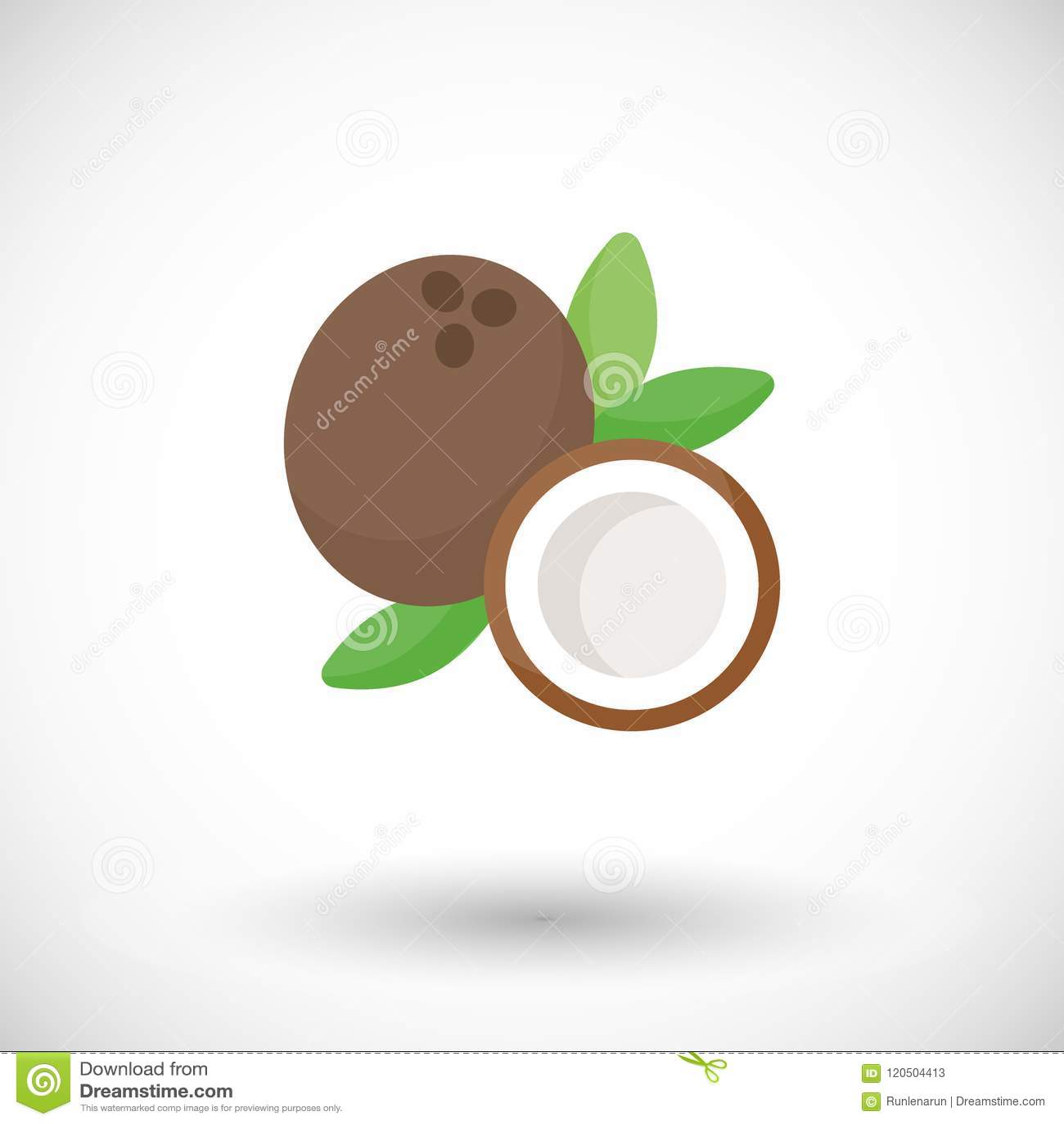 Icona piana di vettore della noce di cocco