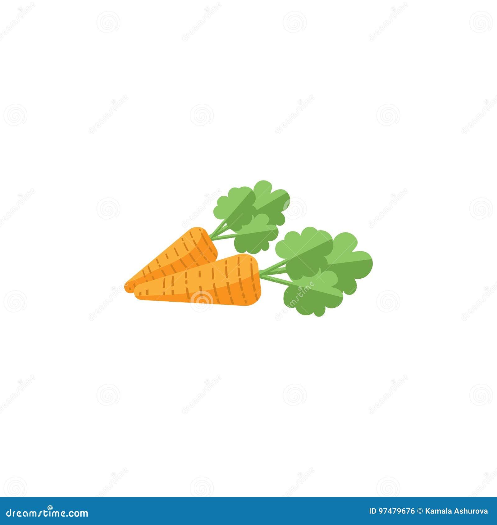 Icona piana isolata della carota L elemento di vettore dell ortaggio a radici può essere usato per la carota, la radice, concetto