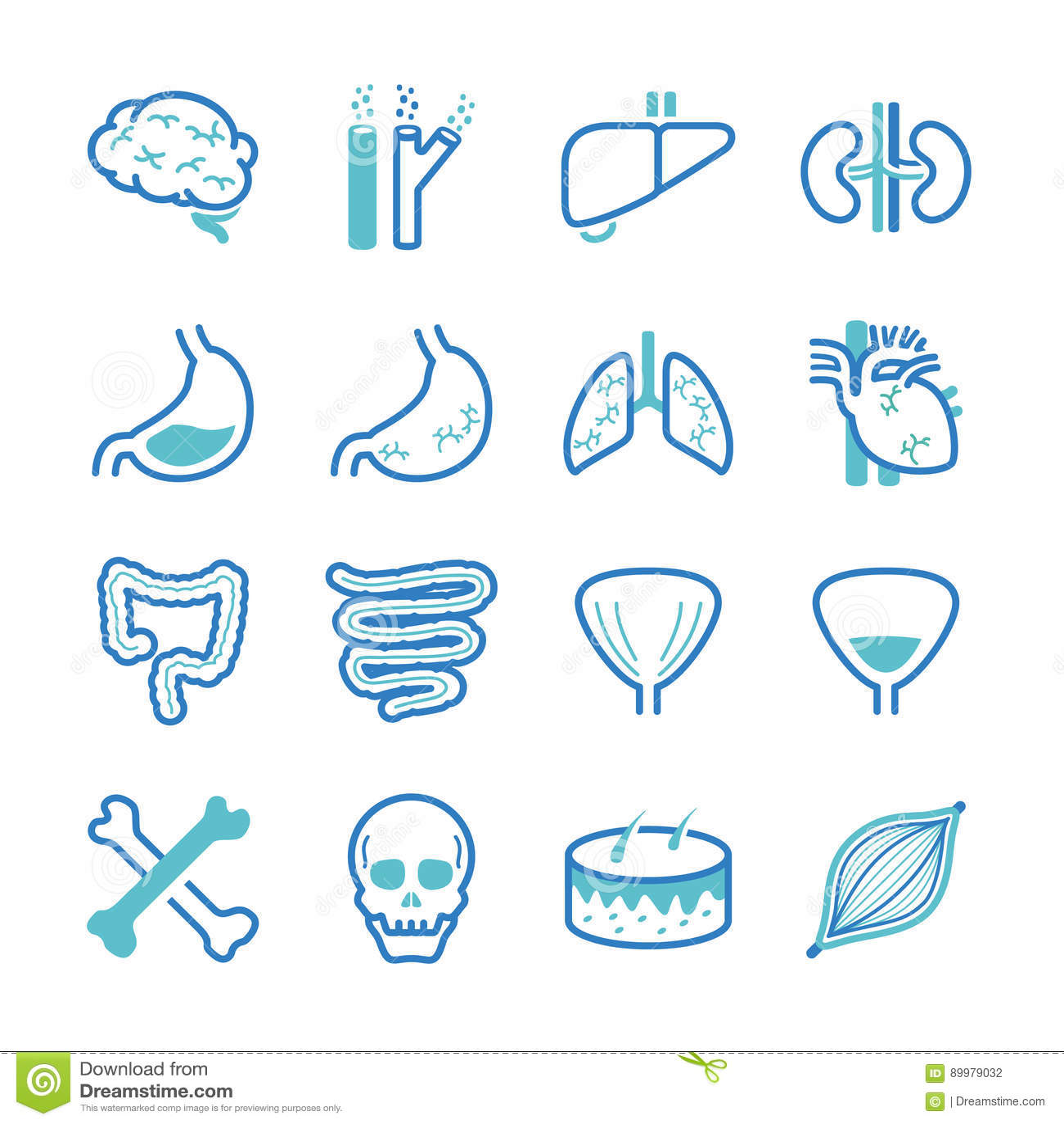 Icone dell organo umano messe