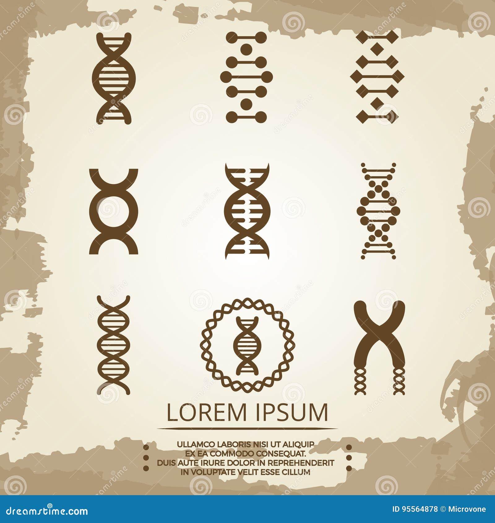 Icone di vettore del DNA - il manifesto d annata di biologia con DNA si sviluppa a spirale