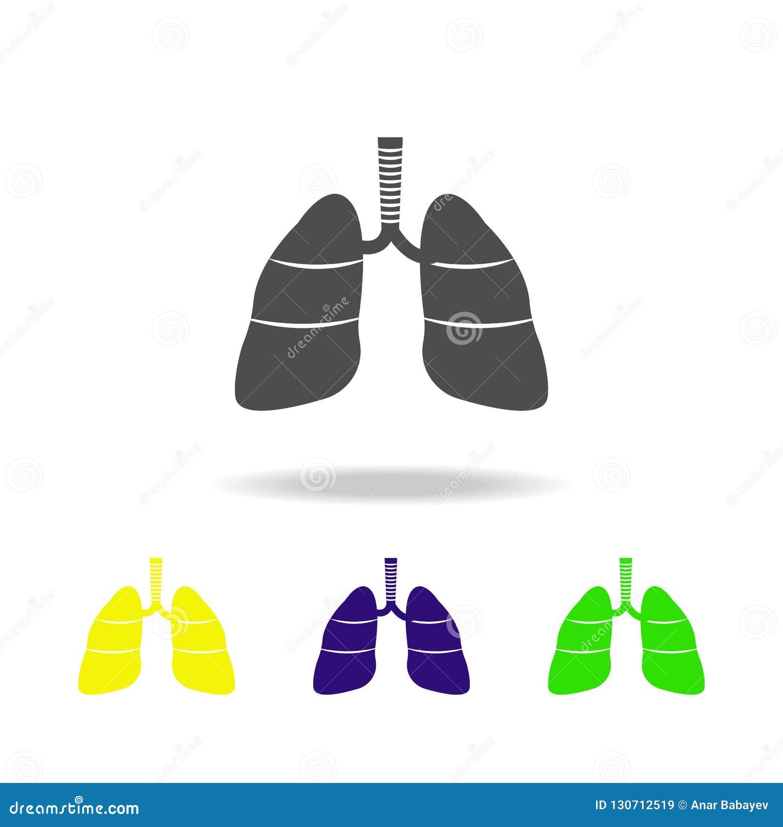 Icone multicolori dell organo dei polmoni dell organo umano Elemento delle icone multicolori delle parti del corpo Segni ed icona