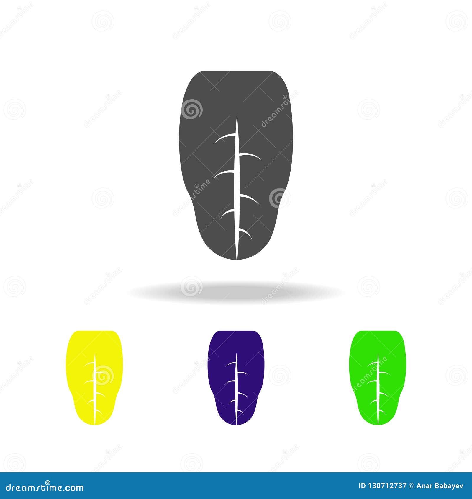 Icone multicolori dell organo umano di lingua Elemento delle icone multicolori delle parti del corpo Segni ed icona della raccolt