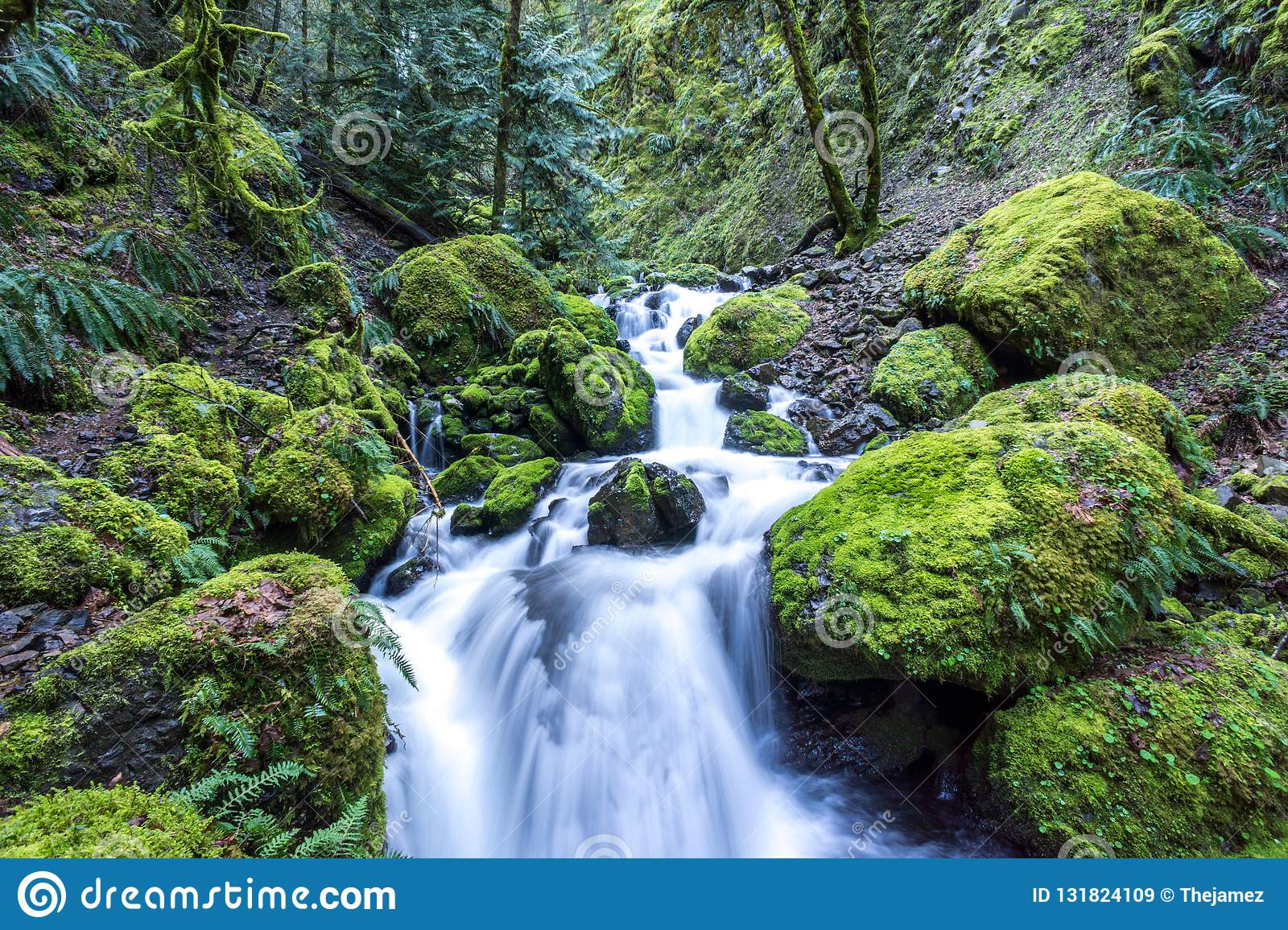 Iconic Moss covered rocks at stream in Oregon, Columbia River Gorge popular with tourists