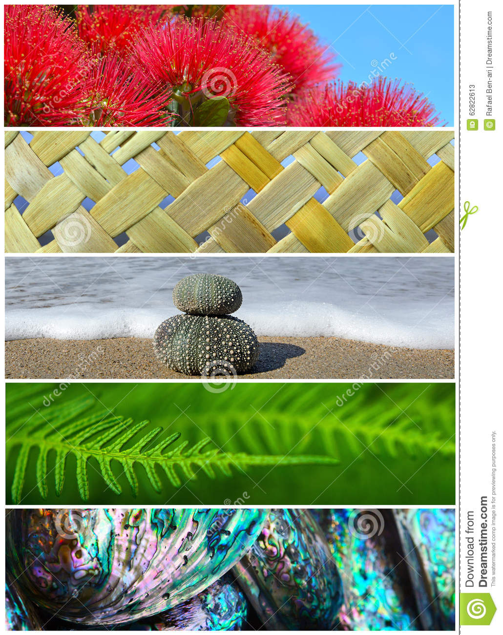 symbolic use of nature in a Name instructor task date symbolic use of nature and wildlife imagery in tortilla curtain the prime characters in the book, torilla curtain, are two men and the.