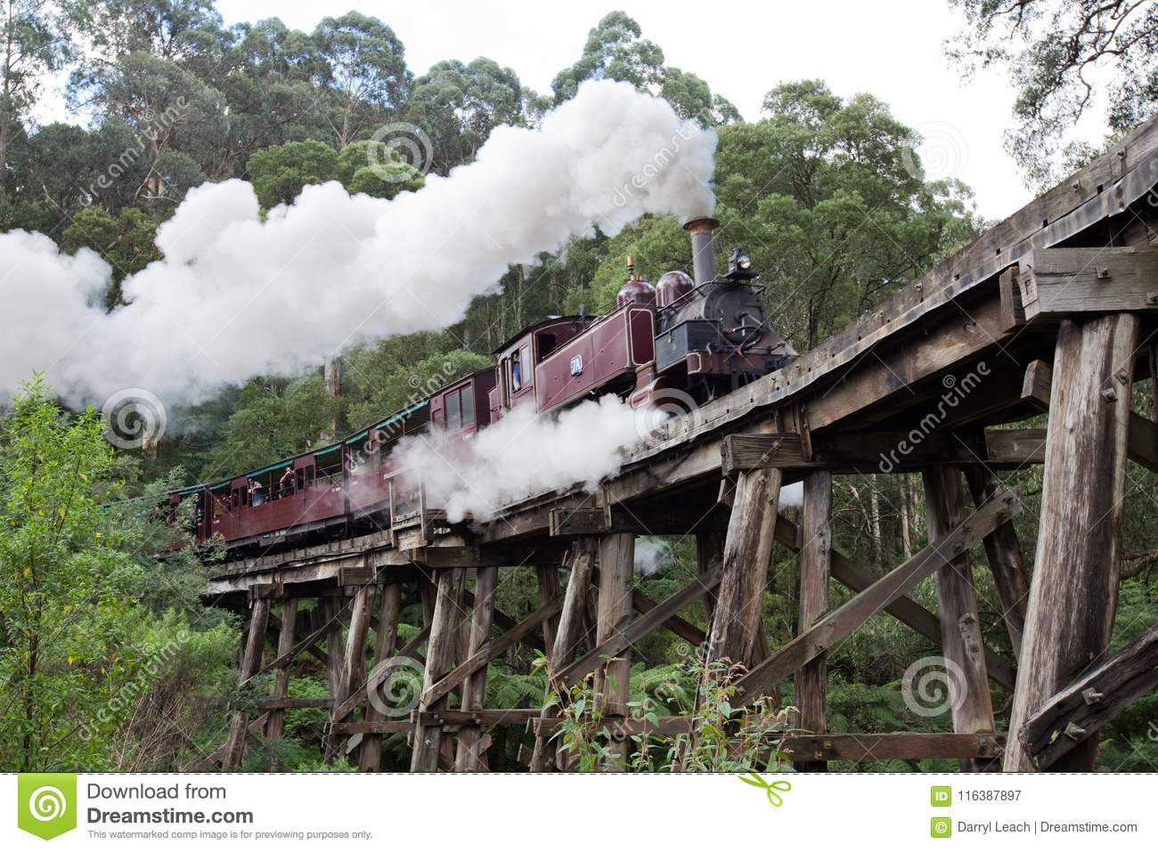 The iconic Pulling Billy Steam Train on the Trestle bridge in th