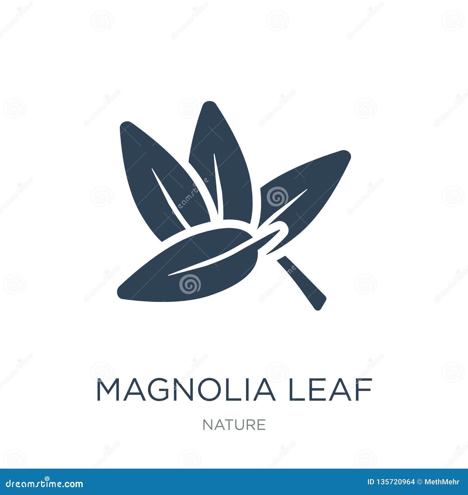 Icono de la hoja de la magnolia en estilo de moda del diseño icono de la hoja de la magnolia aislado en el fondo blanco icono del