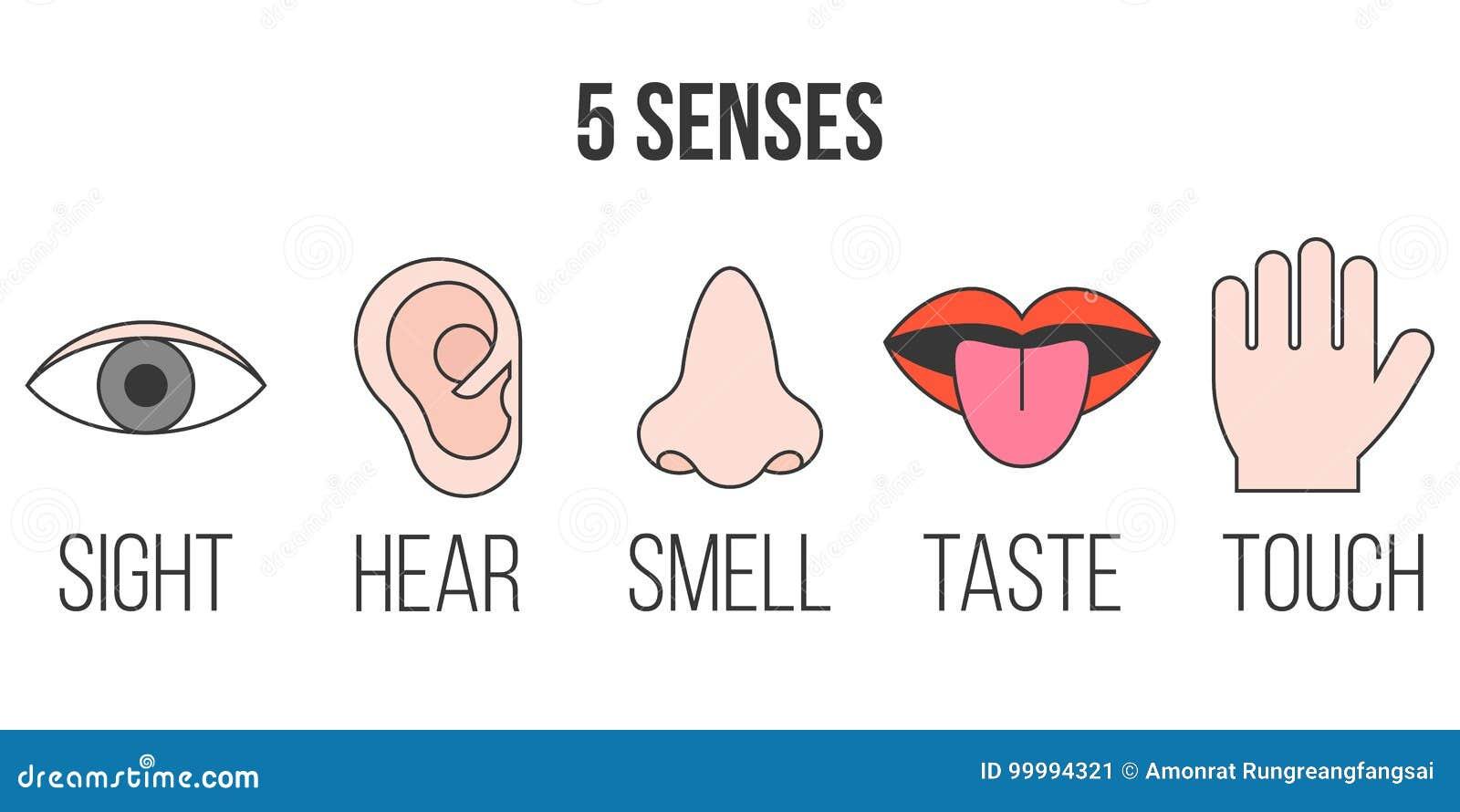 Icono de 5 sentidos