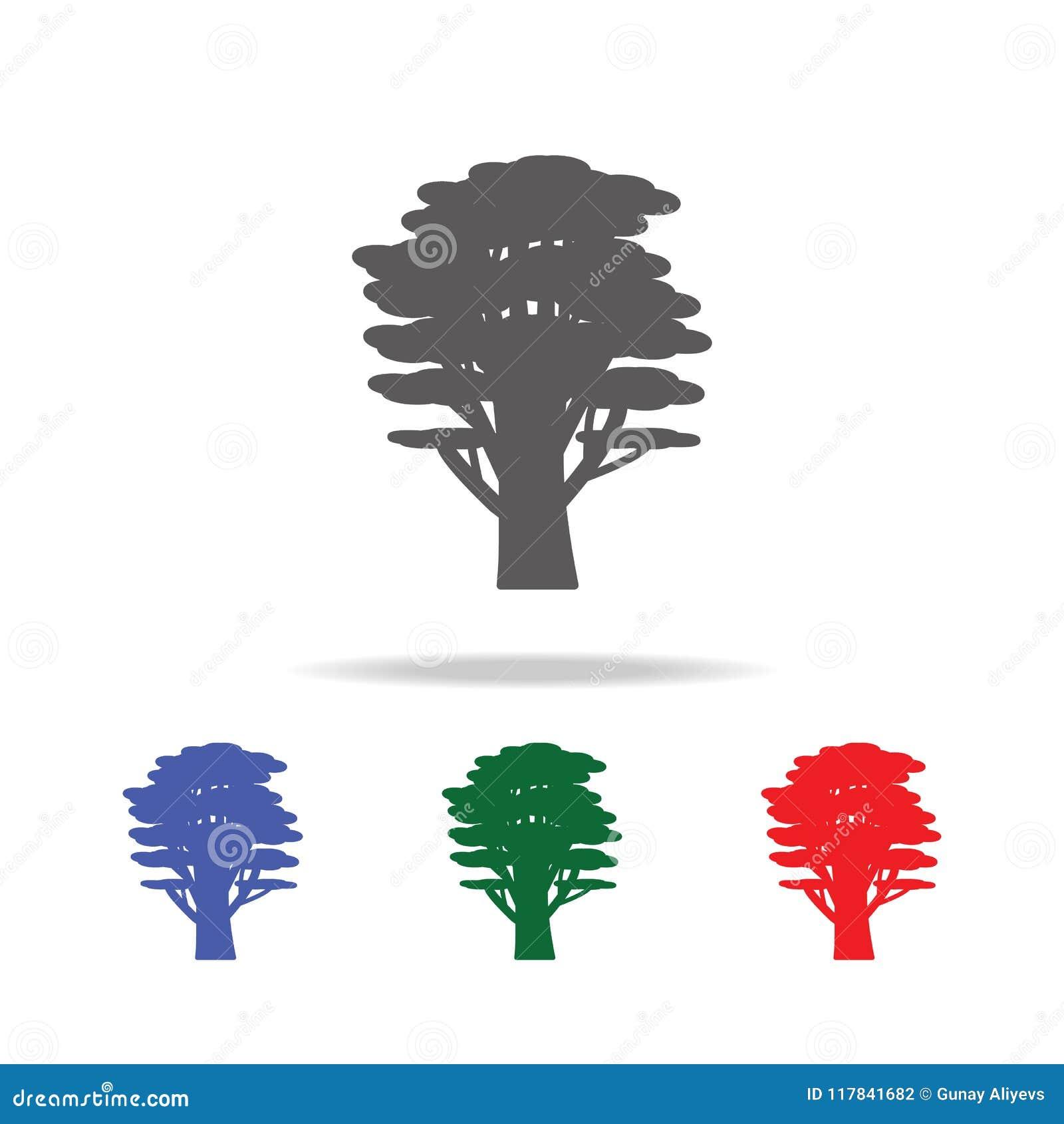 Icono del árbol de cedro Elementos de árboles en iconos coloreados multi Icono superior del diseño gráfico de la calidad Icono si