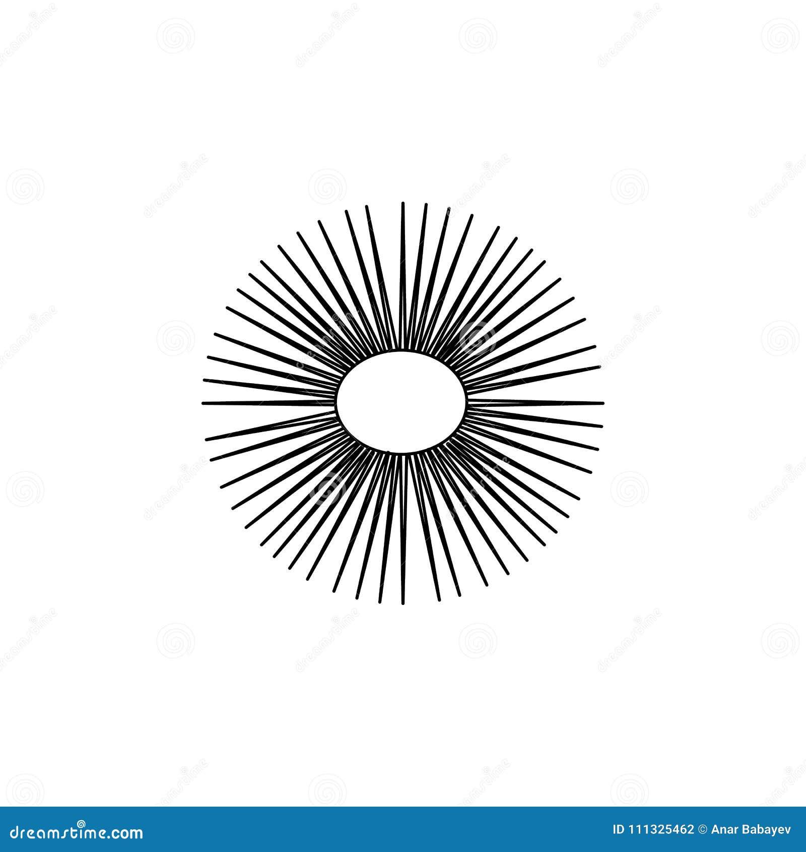 Icono del erizo de mar Elemento del icono popular de los animales de mar Diseño gráfico de la calidad superior Muestras, icono de