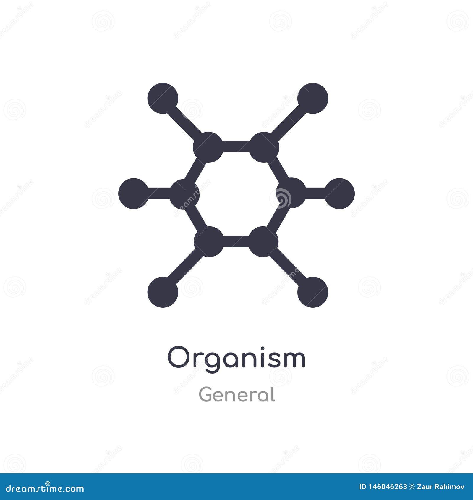 Icono del organismo ejemplo aislado del vector del icono del organismo de la colección general editable cante el s?mbolo puede se