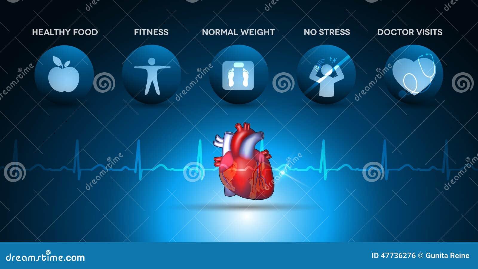 Iconos De La Atención Sanitaria De La Cardiología Y Anatomía Del ...