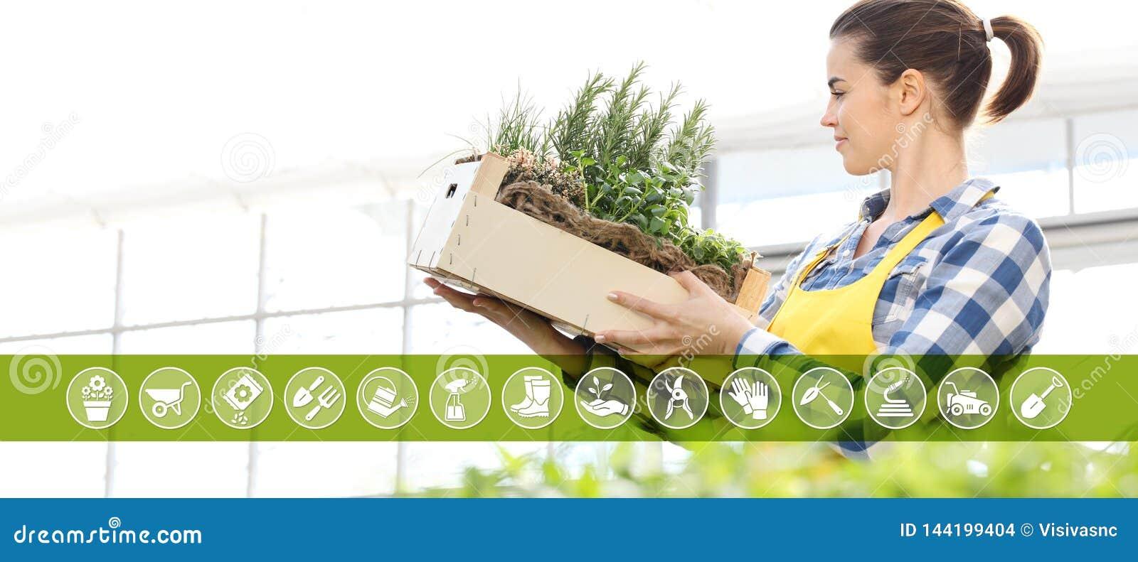Iconos del comercio electrónico del equipo que cultiva un huerto, mujer sonriente con la caja de madera por completo de hierbas d