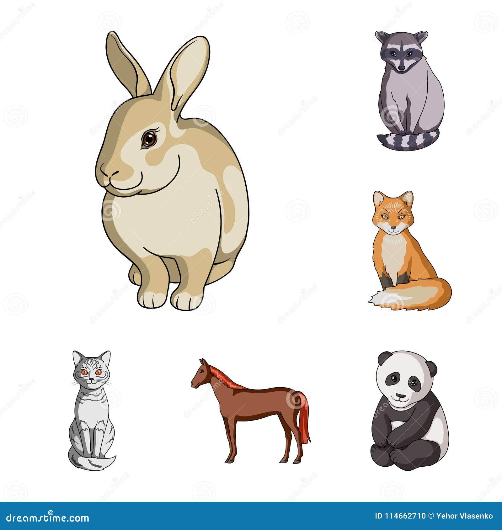 Iconos Realistas De La Historieta De Los Animales En La Colección