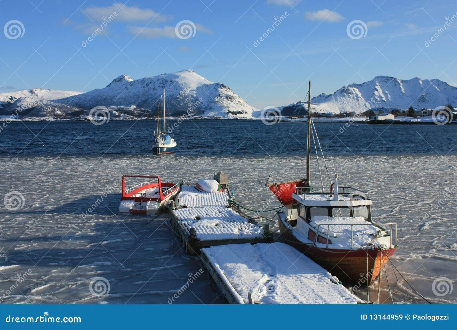 Icy Lofoten s fjord