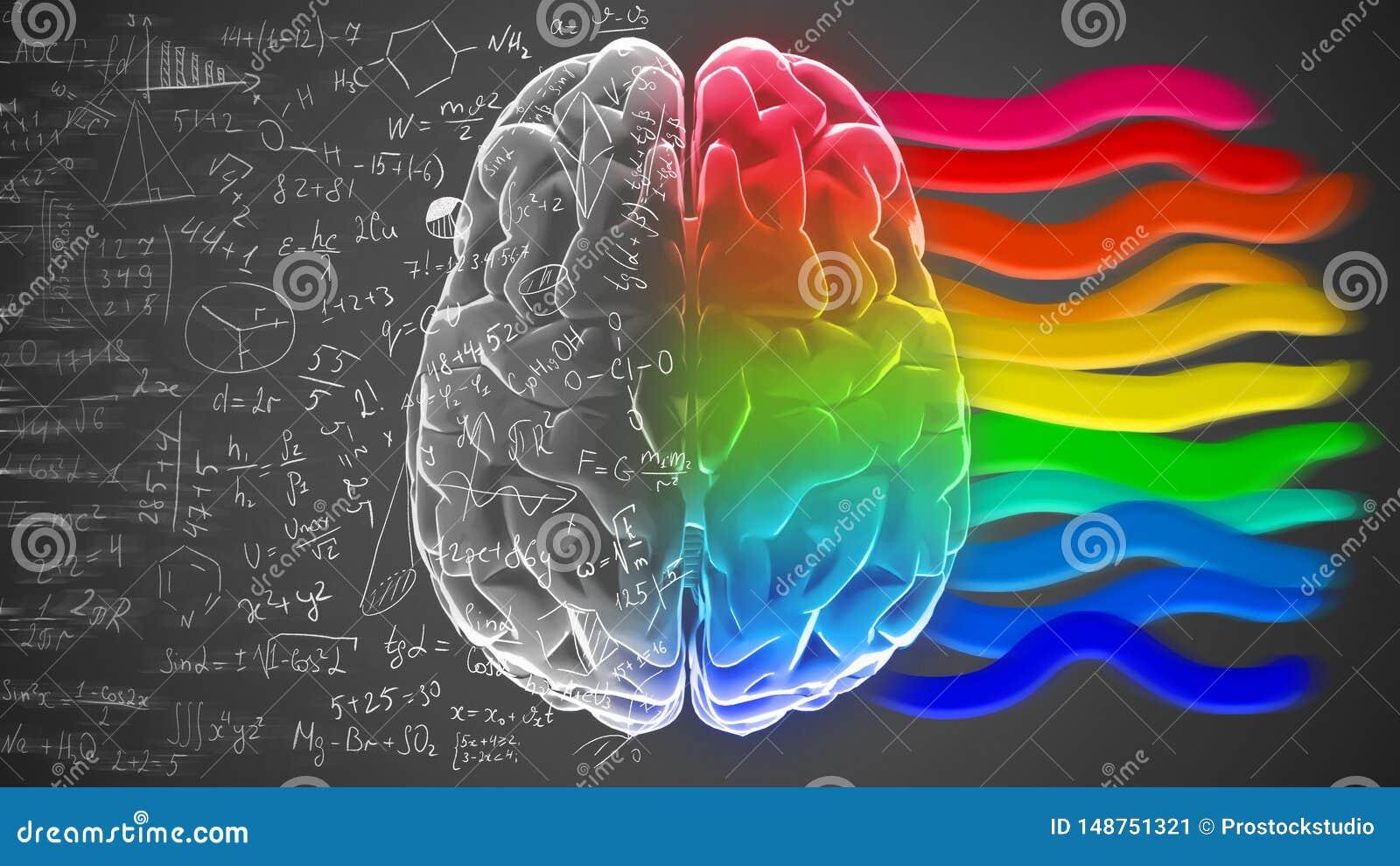 Idérika och logiska halvor av den mänskliga meningen