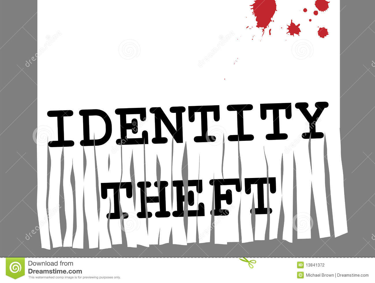essay on identity theft