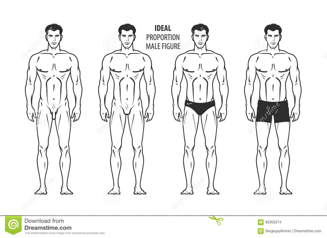 Ideal Proportion Male Figure Hand Drawn Outline Man In