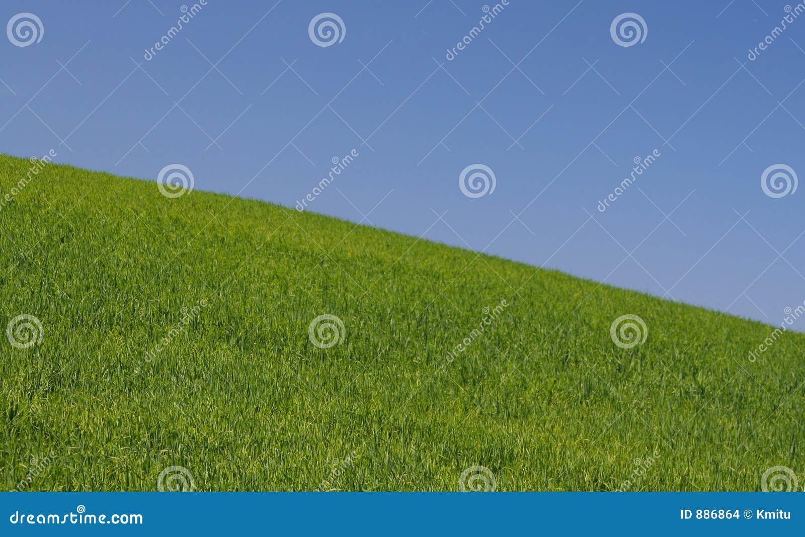 Idealny w dół wzgórza