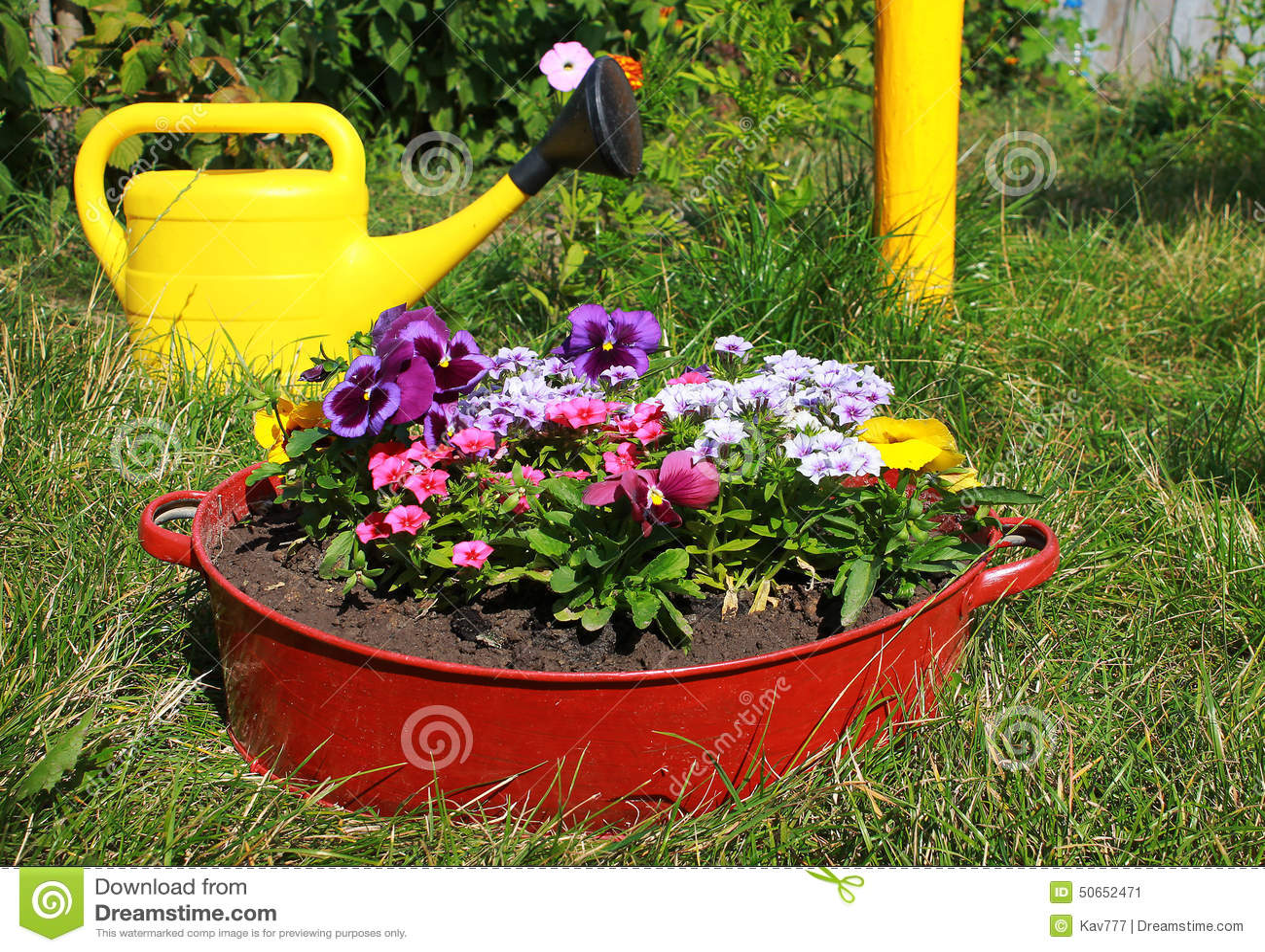 Ideeën Voor Tuin, Bloemen In Oude Wasbak Stock Foto  Afbeelding 50652471 # Wasbak Geel_212052