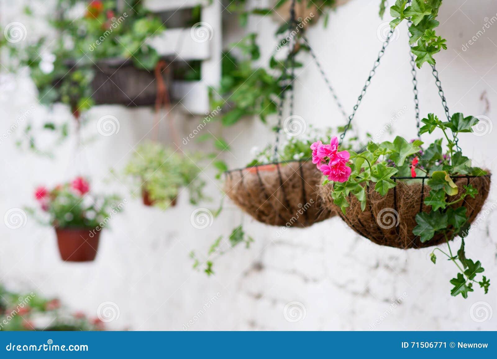 Idee Per Vasi Da Fiori idee del pallet per fare il giardinaggio immagine stock