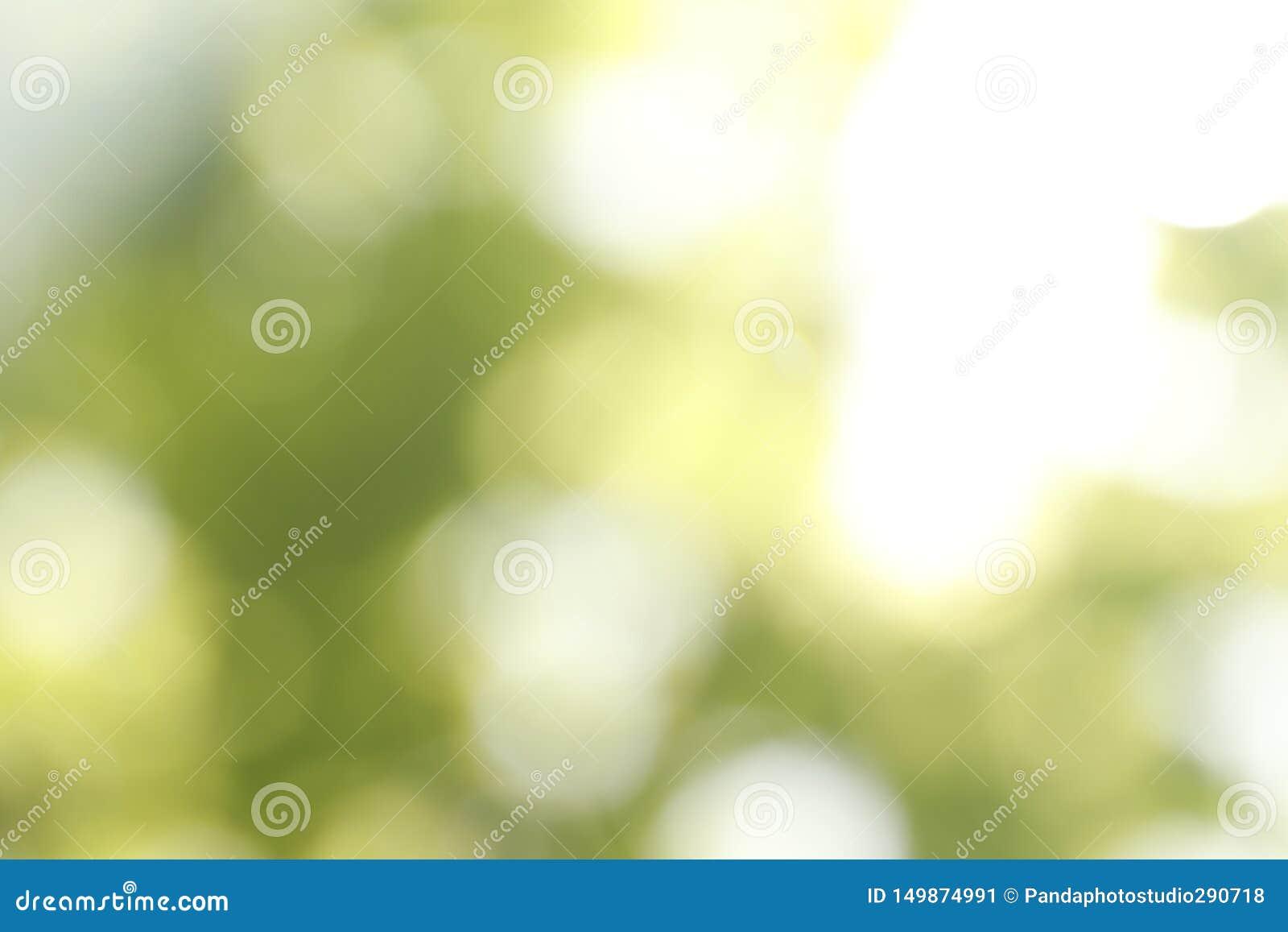 Ideia borrada do fundo verde abstrato Efeito de Bokeh