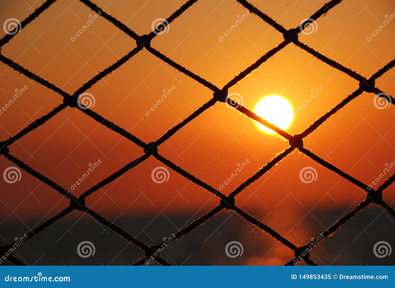 Ideia do por do sol através da rede do veleiro