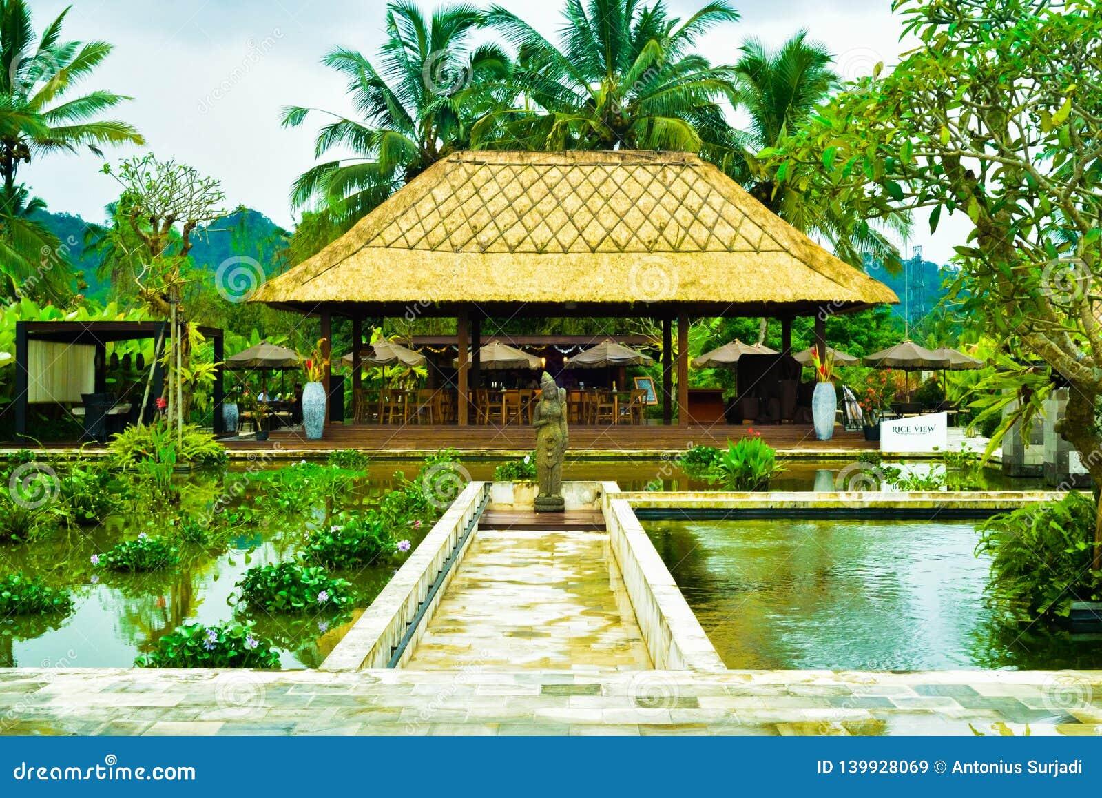 Ideia do recurso tradicional romântico com as lagoas no meio do campo verde do terraço do arroz e das palmeiras altas do coco