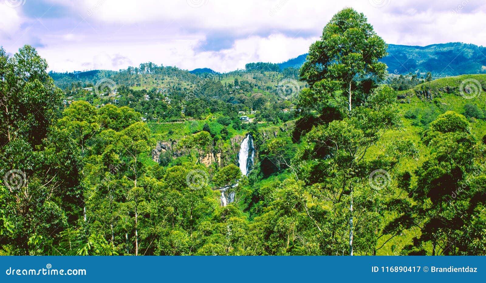 Ideia traseira do ` de Devon Falls do `, Sri Lanka