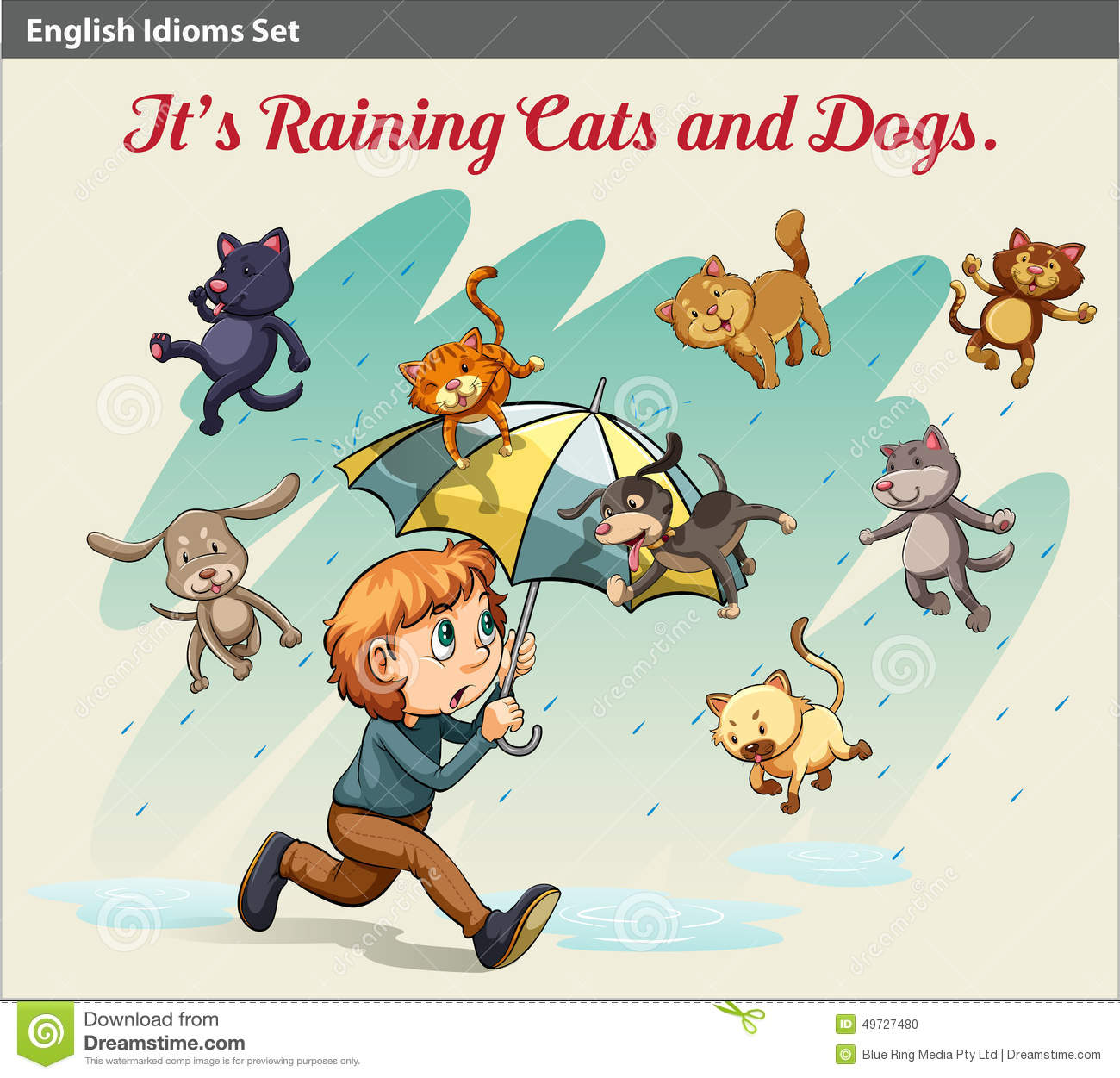 Art Illistration Cats And Dogs