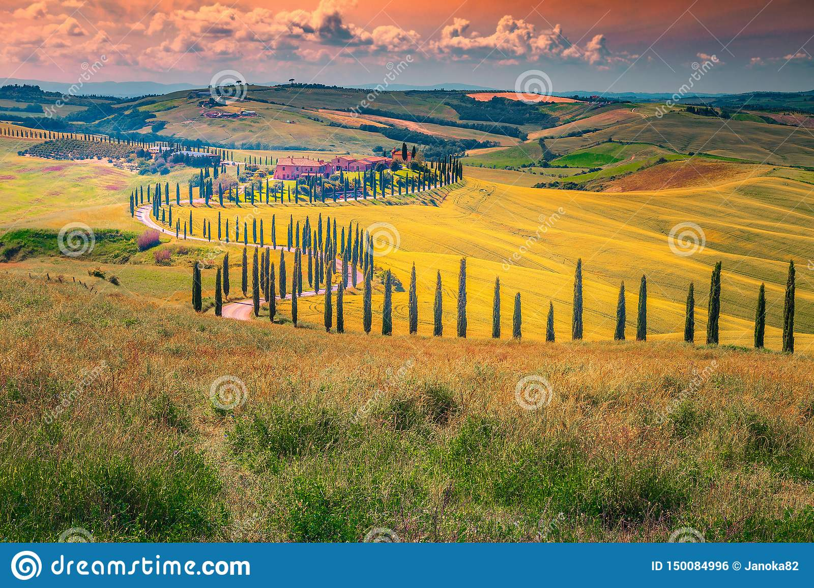 Idyllic Tuscany landscape at sunset with curved rural road, Italy