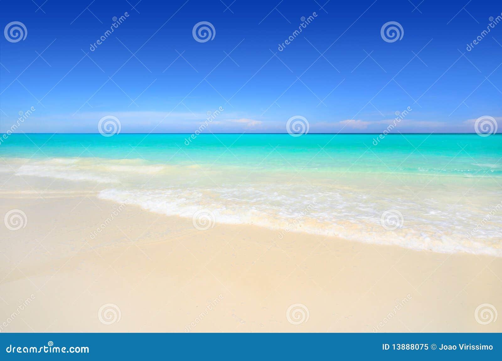 Idyllic white sand tropical beach