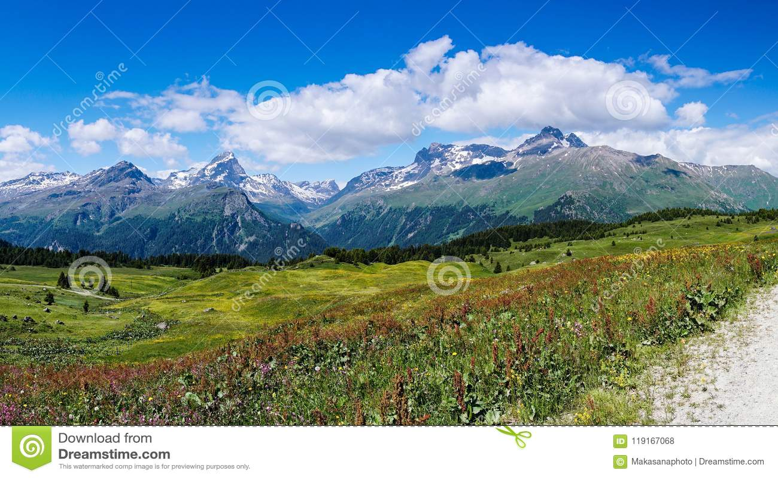 Idylliczny góra krajobraz w lecie z żwir drogą na dalej w prawo stronie