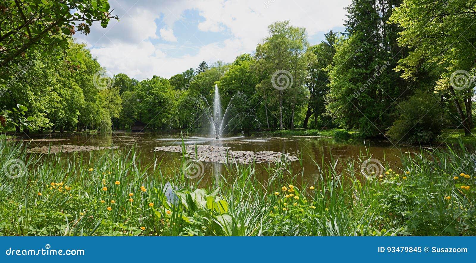 Idylliczny staw z fontanną i globeflowers przy wiosną