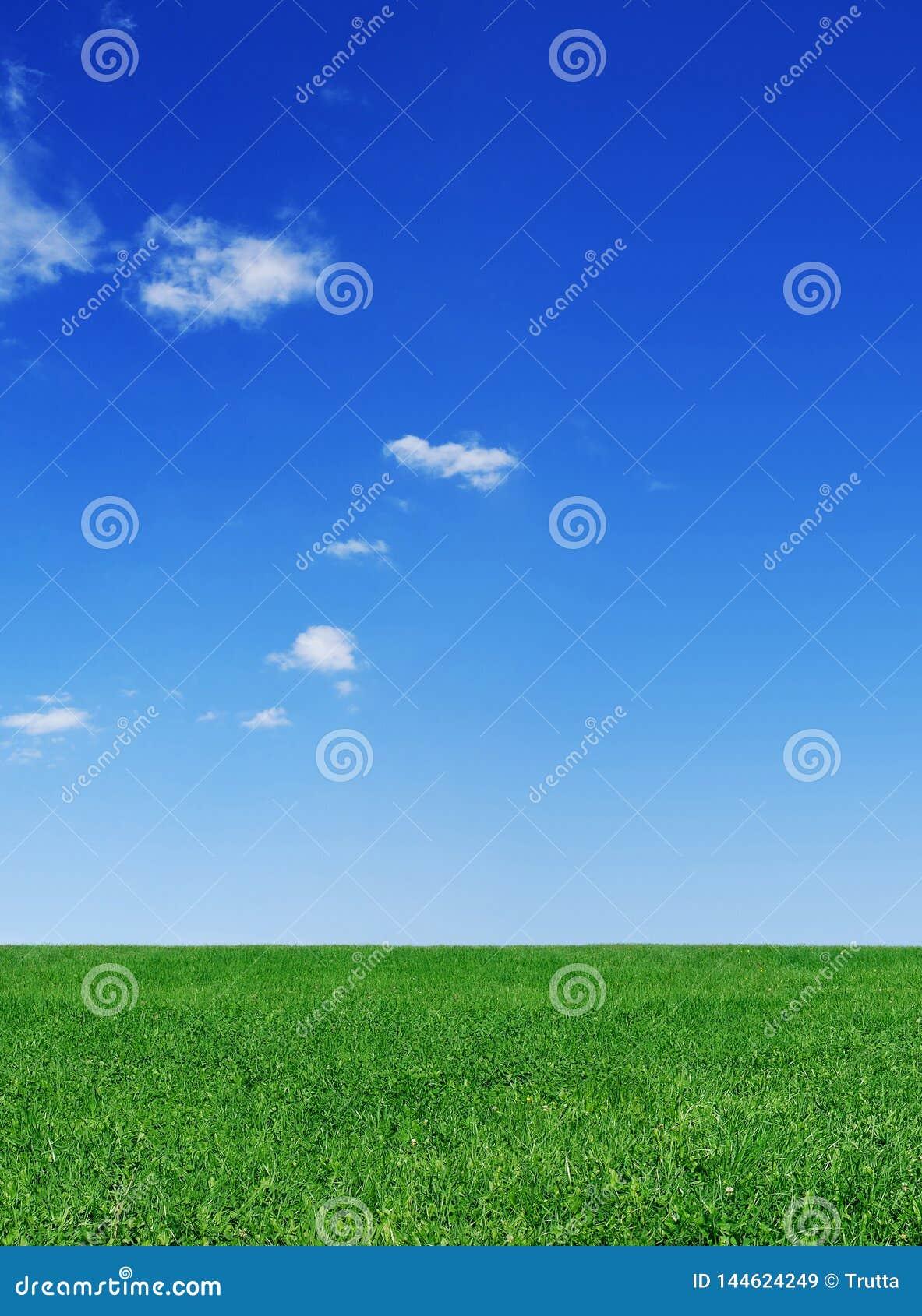 Idylliczny widok, zieleni pole i niebieskie niebo z białymi chmurami,