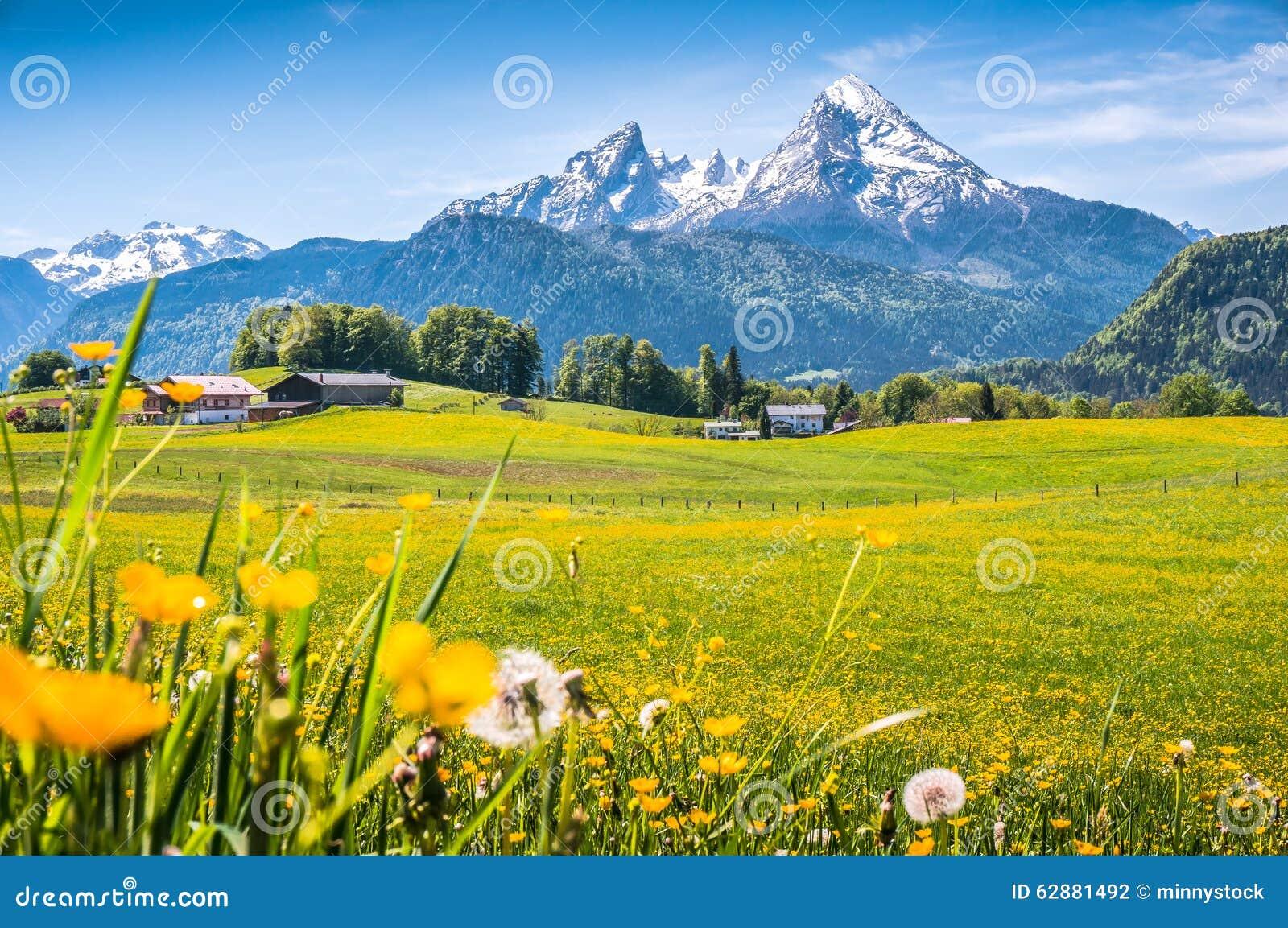 Idylliczny wysokogórski krajobraz z zielonymi łąkami, domami wiejskimi i snowcapped halnymi wierzchołkami,