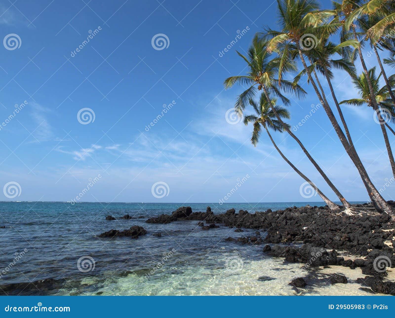 Idyllisch tropisch strand
