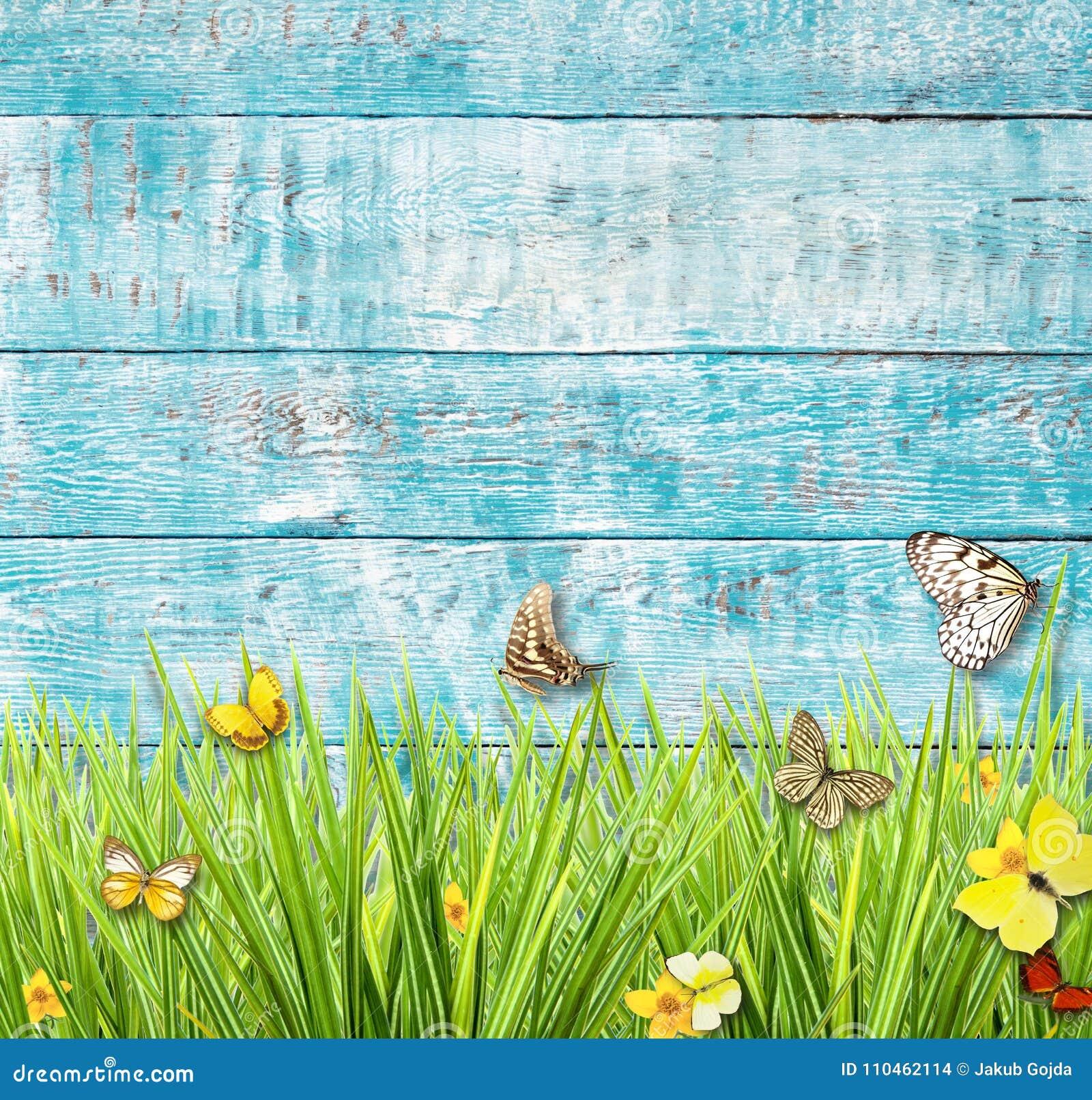 Idyllisk våräng med fjärilar med gamla träplankor på