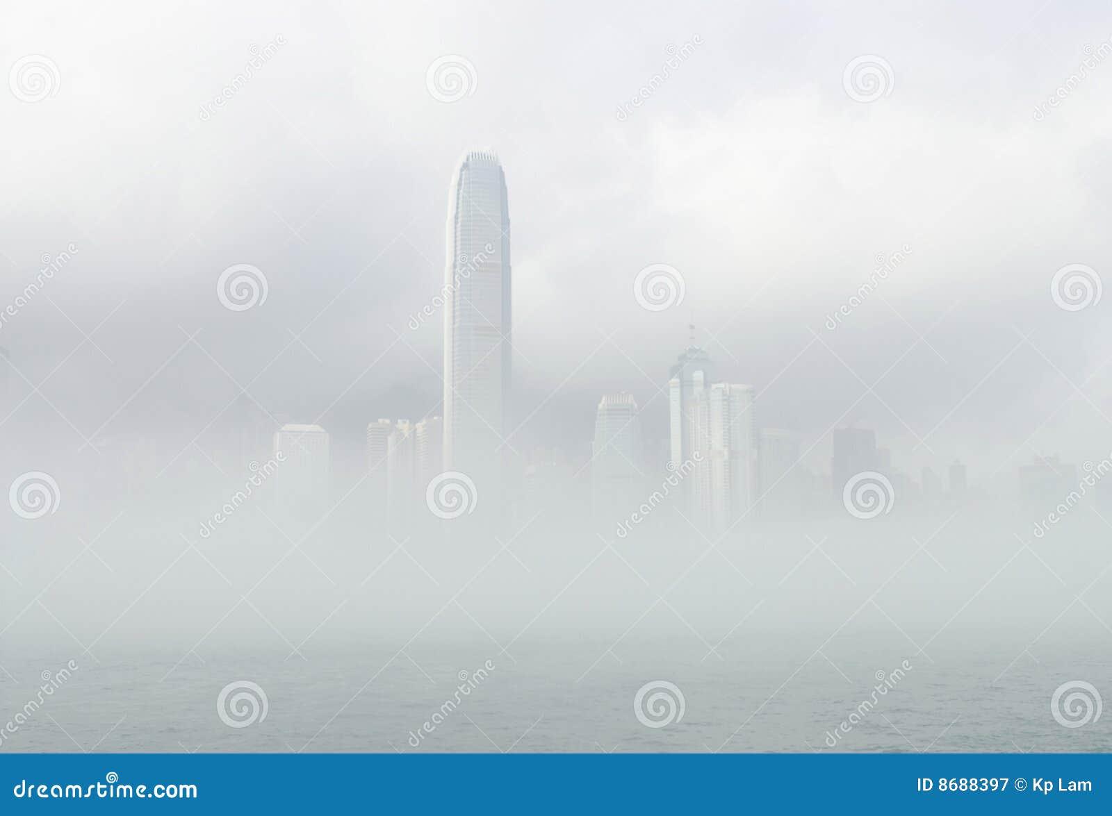 Ifc misty