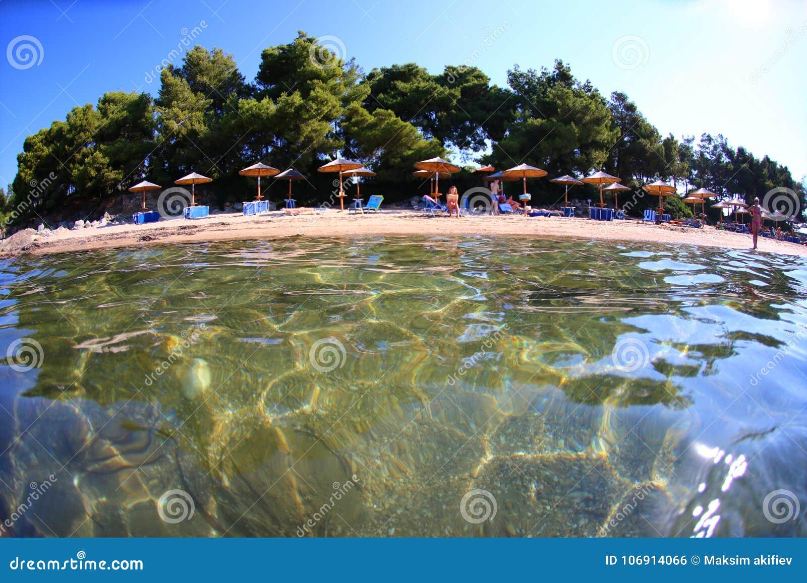 Iglasta plaża z parasolami w Halkidiki