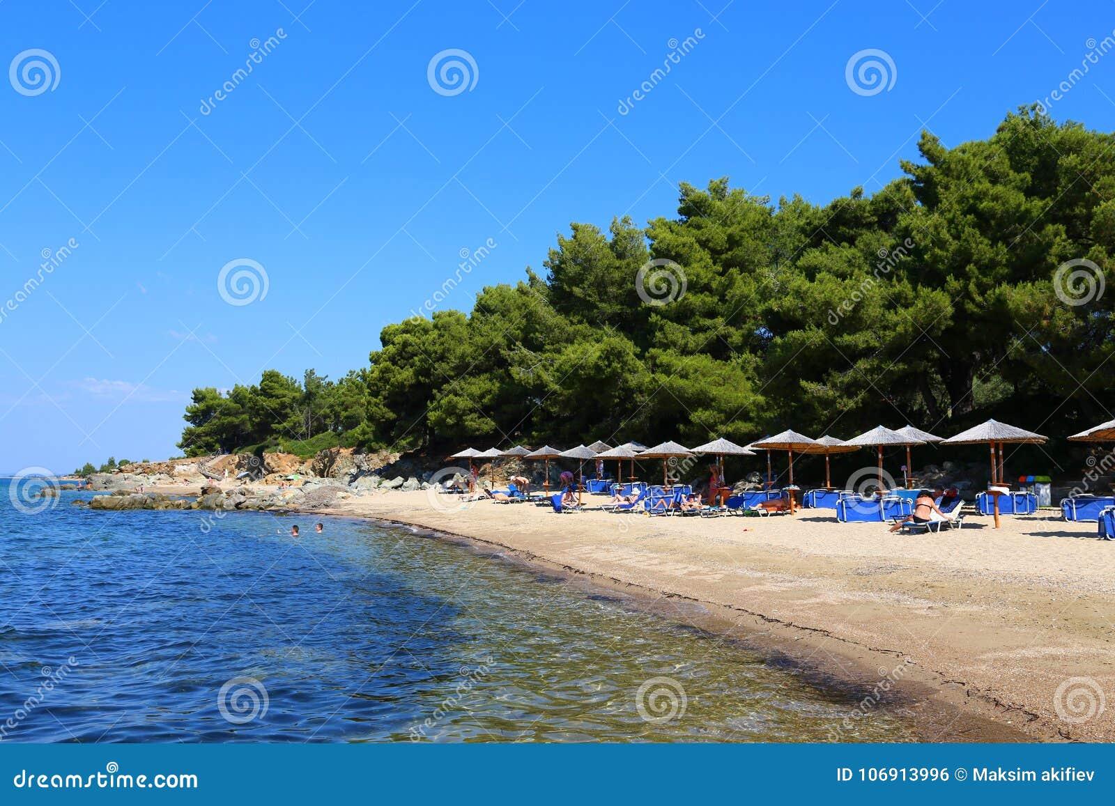 Iglasta plaża z parasolami w Halkidiki, Sithonia