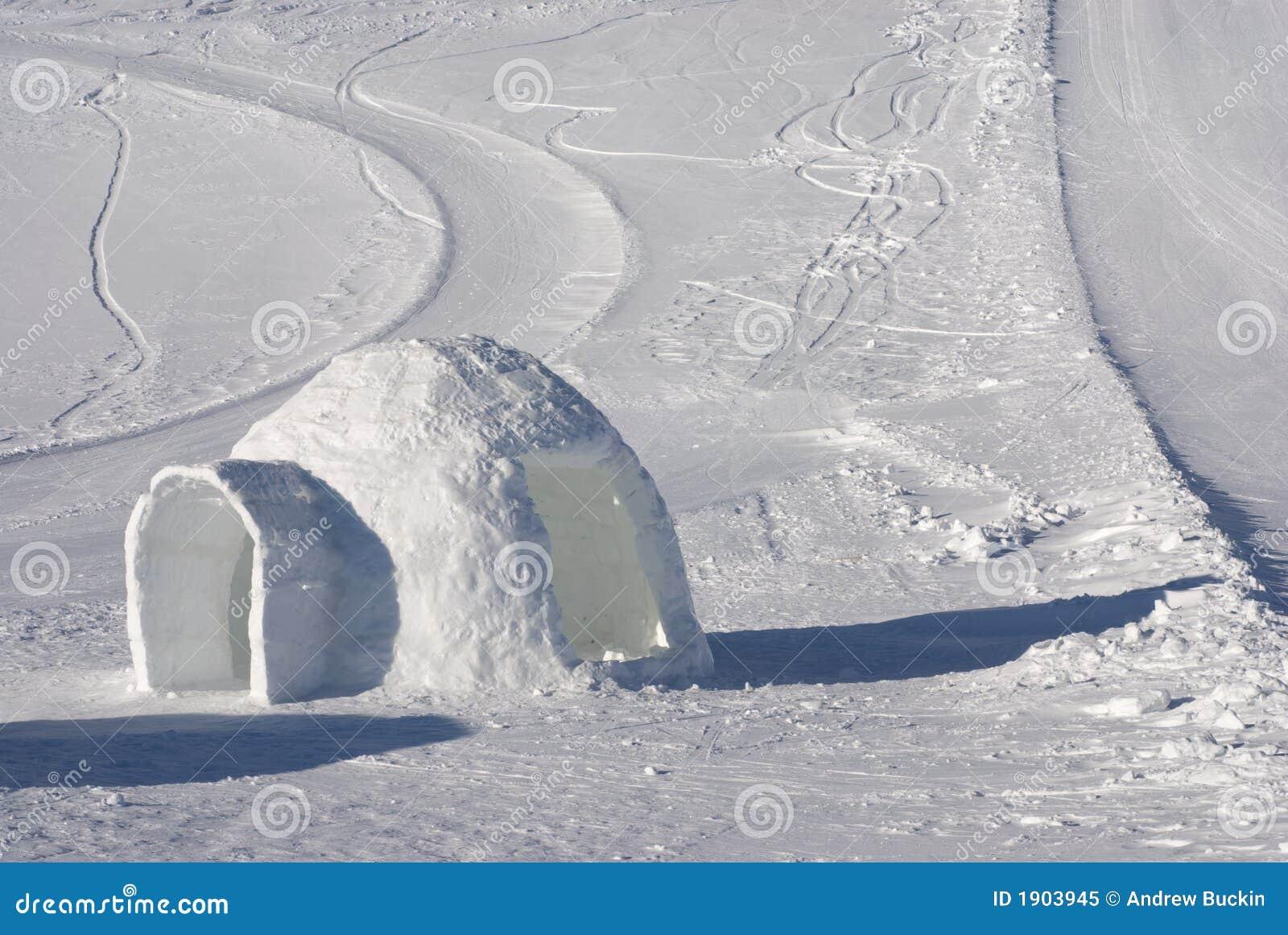Igloo för is 2