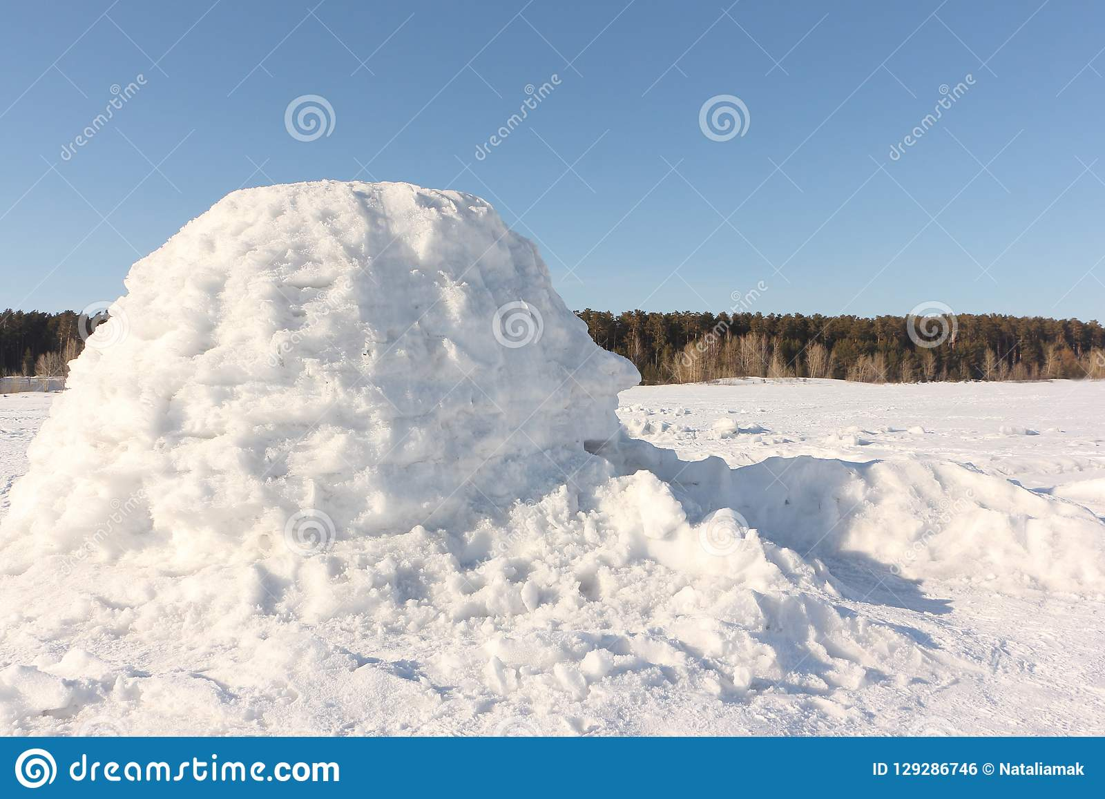 Igloo standing on a snowy glade