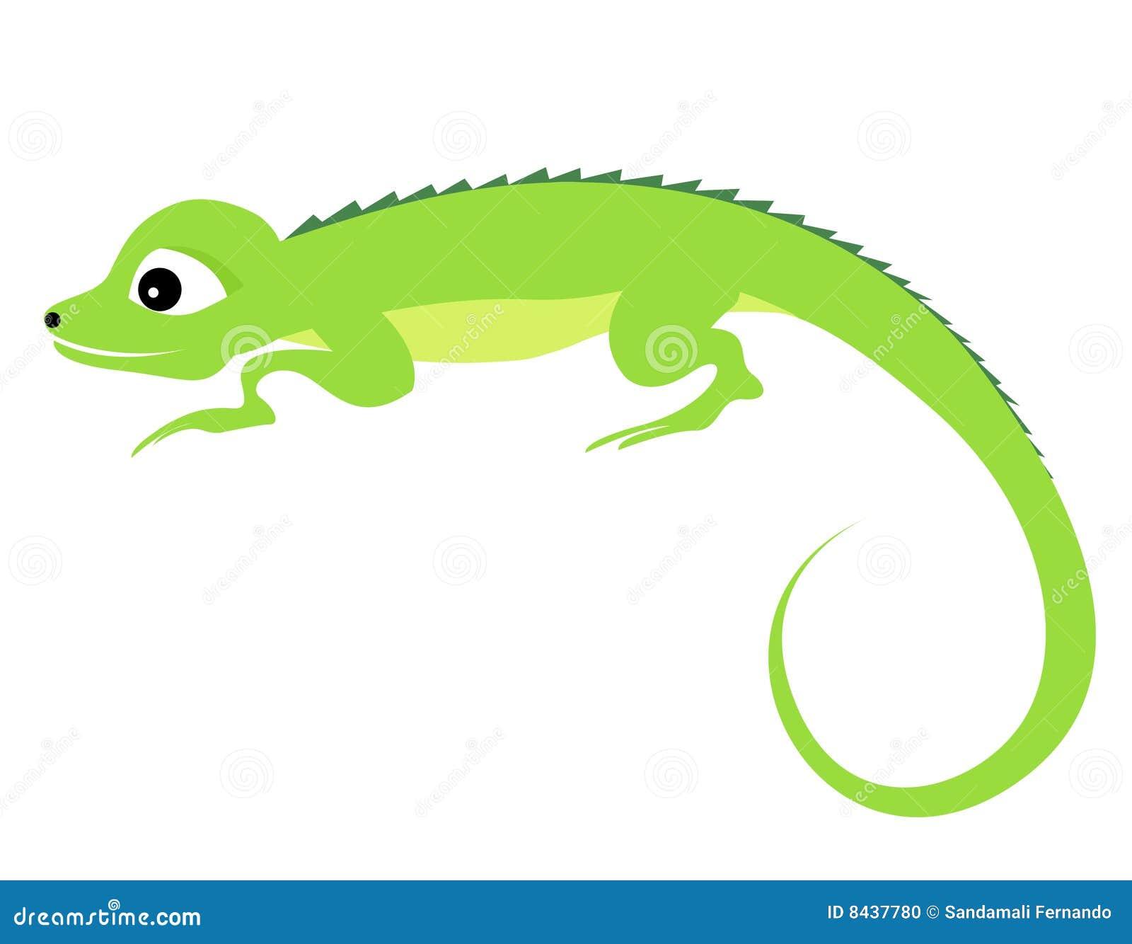 Cute cartoon illustration of an Iguana isolated on white background.