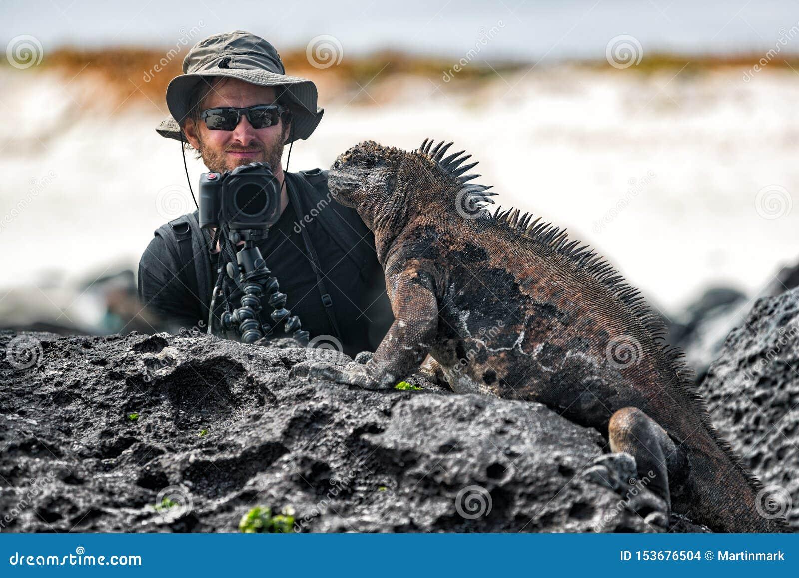 Iguane de Galapagos et photographe de touristes de faune de nature prenant la photo