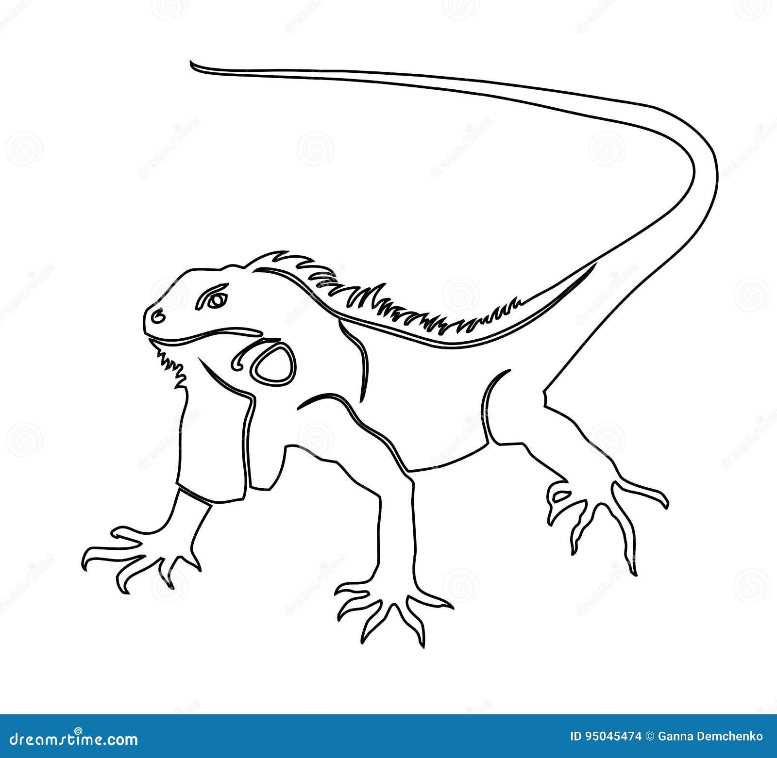 Iguane illustration de livre de coloriage illustration de vecteur illustration du retrait - Coloriage iguane ...