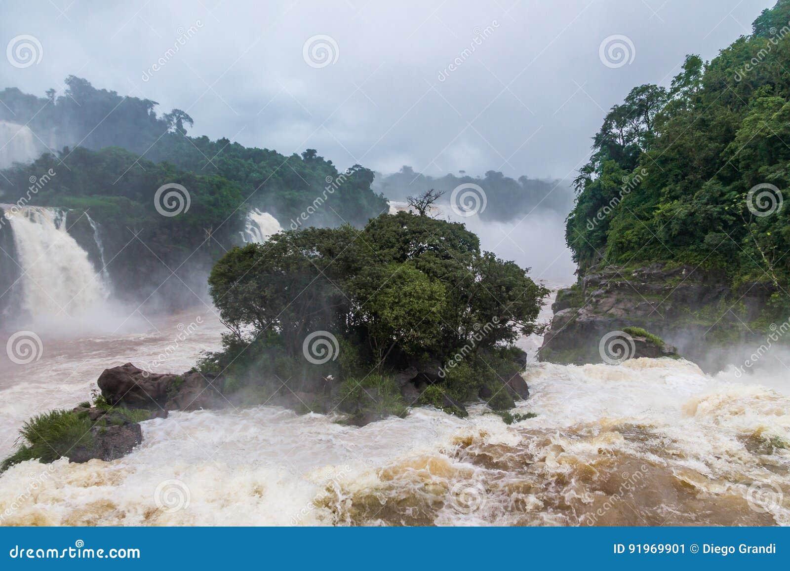 Iguazu Falls sikt från brasiliansk sida - Brasilien och Argentina gränsar