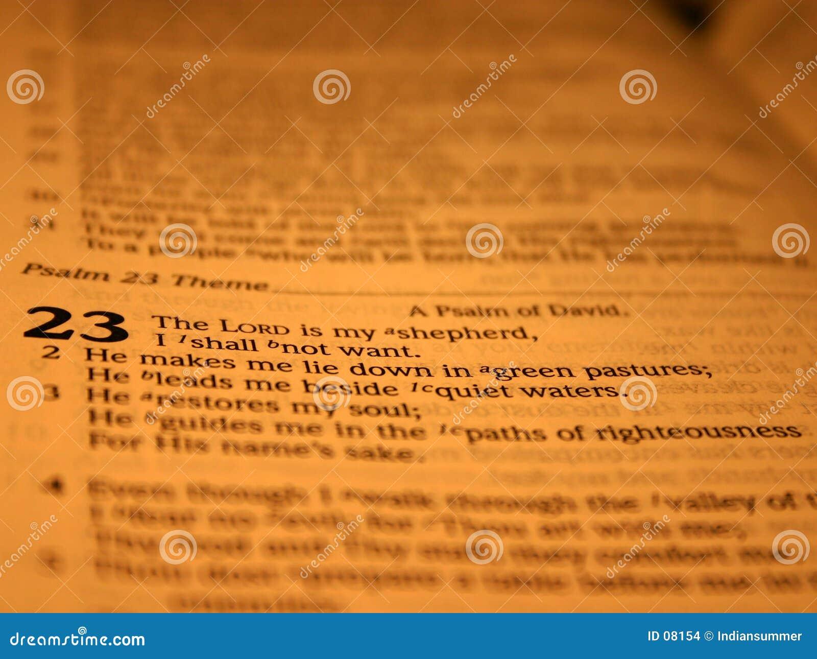 Ii 23 psalm