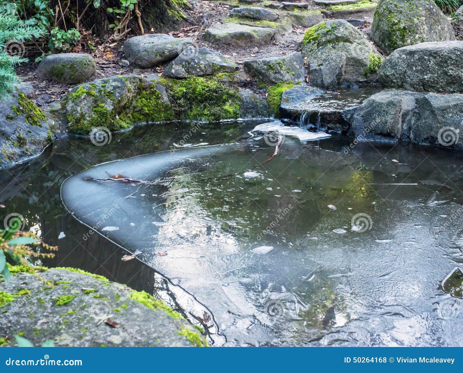 Ijs op vijver met kleine waterval stock foto afbeelding for Kleine vijver tuin